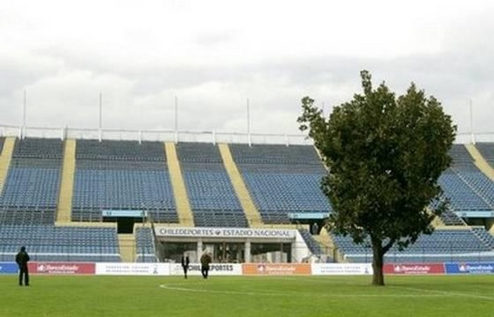 Дерево в центре футбольного поля