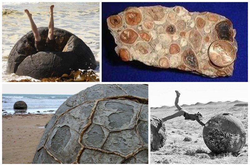 Каменные чудеса, или что такое конкреции