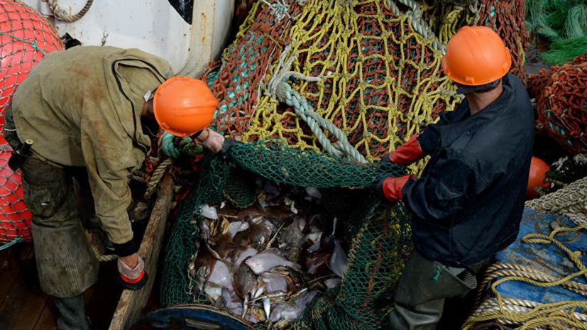 Объявлена программа Международного рыбопромышленного форума в Петербурге