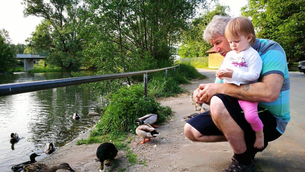 Экзотические и редкостные птицы в Германии, а конкретно возле моей дачи!