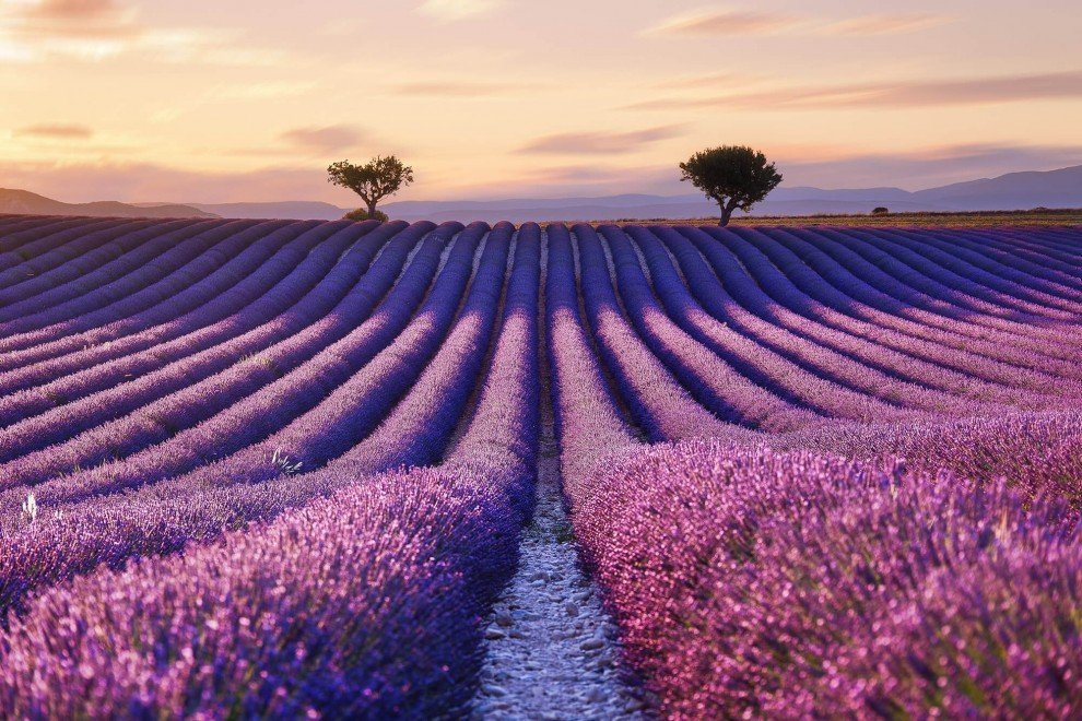 Атмосфера французского Прованса в фотографиях Аурельена Биллуаза
