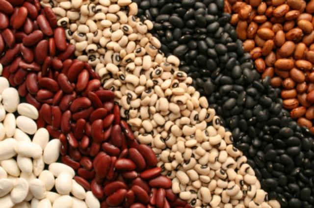 Полезные свойства растения фасоль