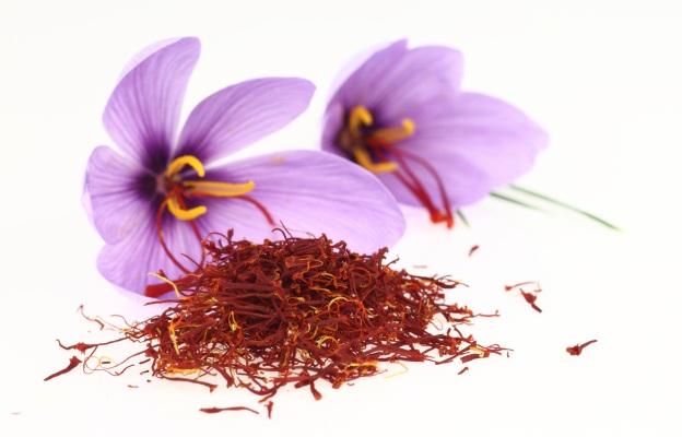Бесценные лекарственные средства из шафрана