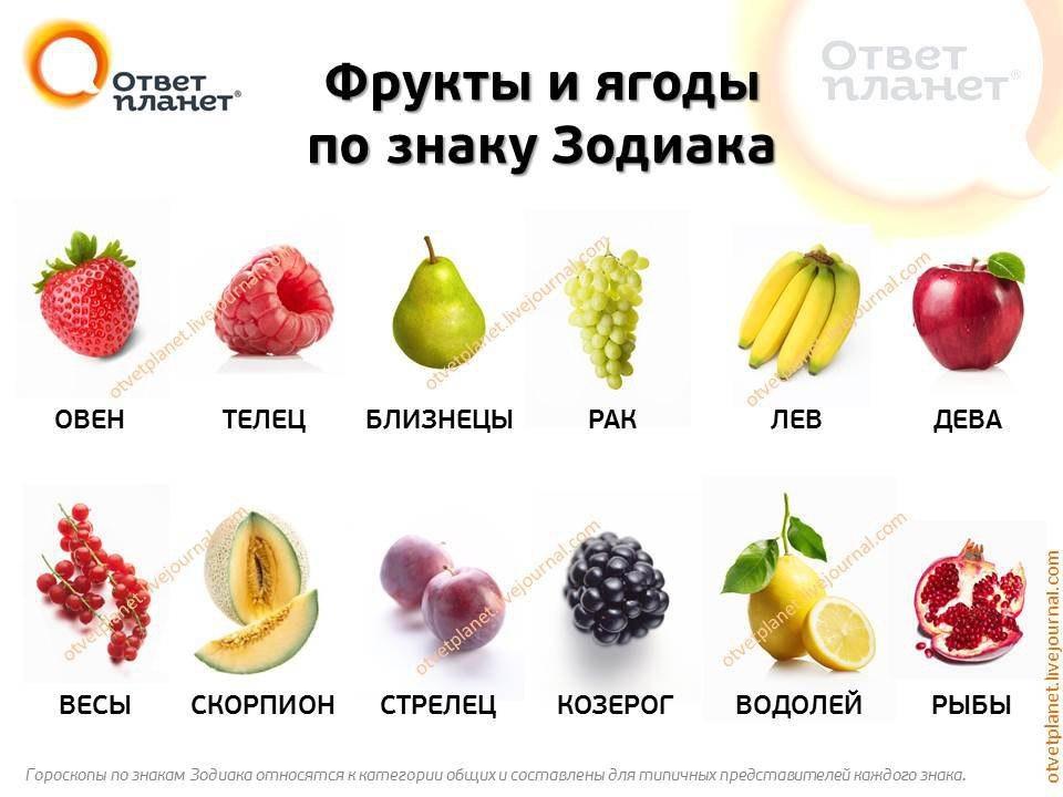 Что вы за фрукт такой?