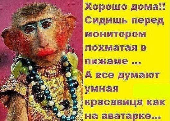 Хорошо дома... Улыбнемся)))