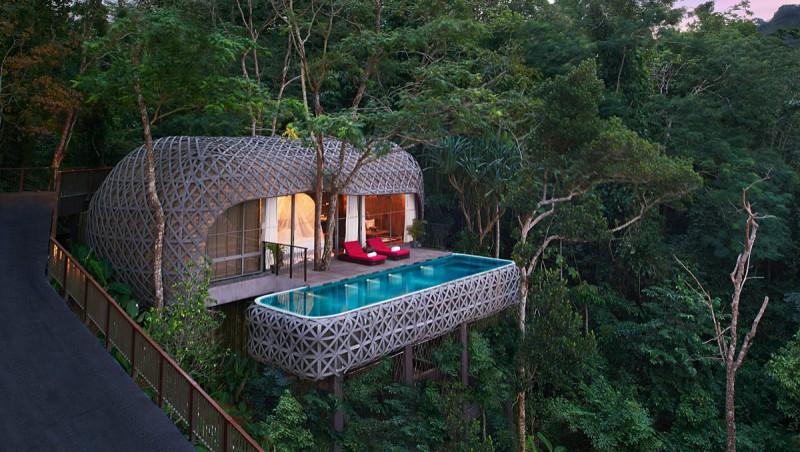 Очень необычные отели, в которых можно жить на деревьях