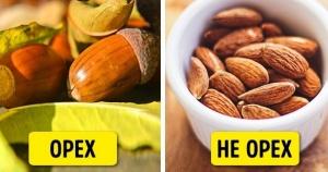 15 продуктов, которые оказались не тем, что мы о них думали