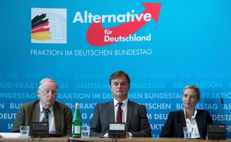 AFD пробилась к власти в Германии