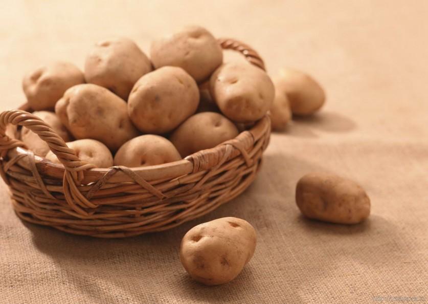 Как один огородник семенной материал картофеля обновлял