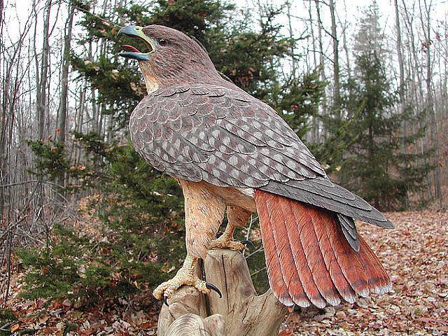 Они как настоящие! Удивительно реалистические скульптуры из дерева! Оцените мастерство.