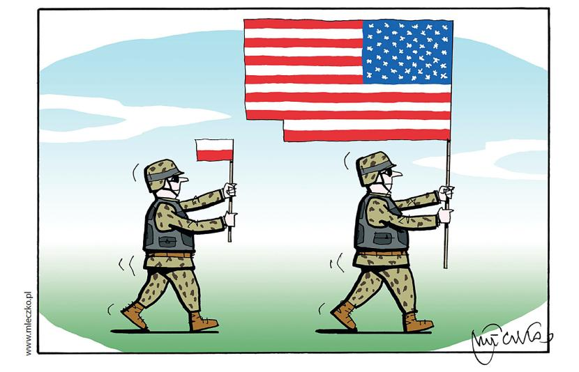 Польша отдала США для вырубк…