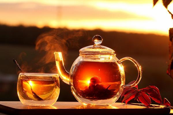 Целебные напитки от простуды - 13 эффективных рецептов