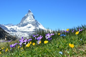 В Швейцарии начали продавать горный воздух