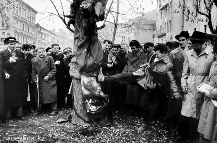 Ликвидация или Кровавая осень 1956-го