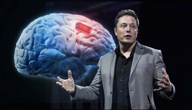 Новая «Pravda» Илона Маска и гримасы текущей реальности