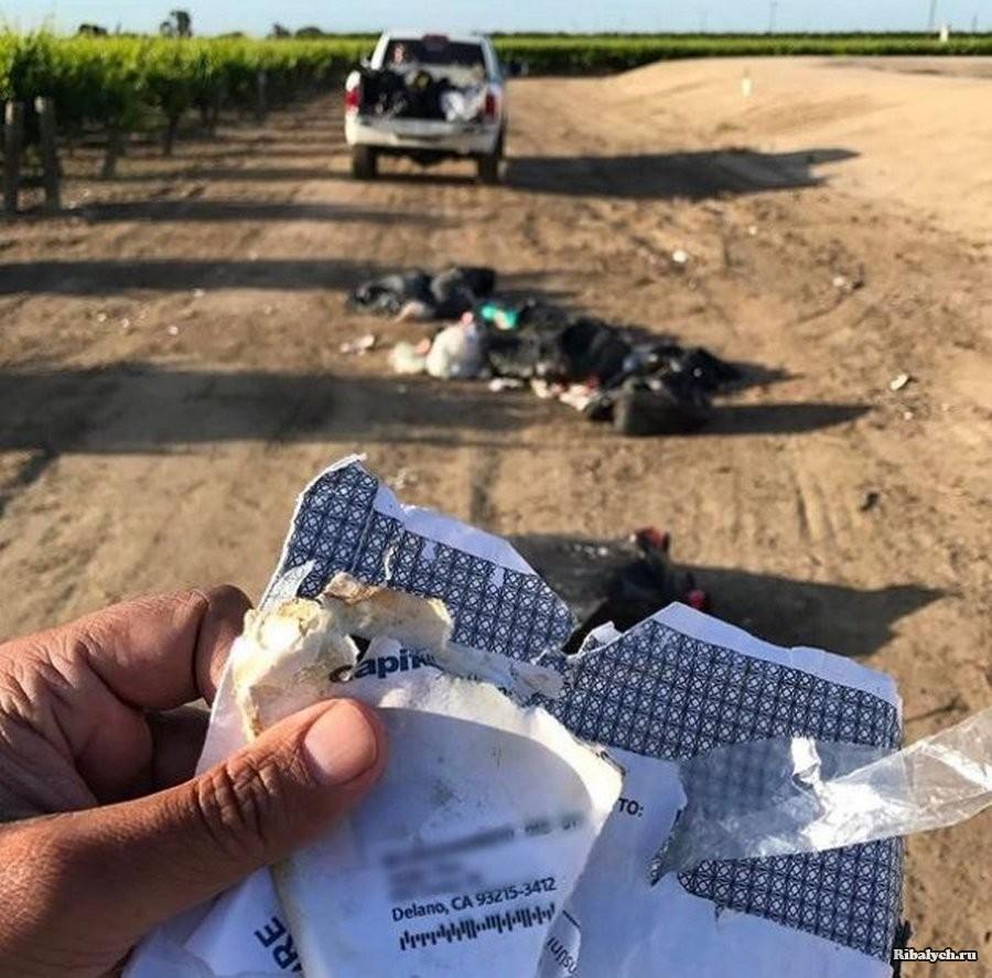Страшная месть за выброшенный мусор
