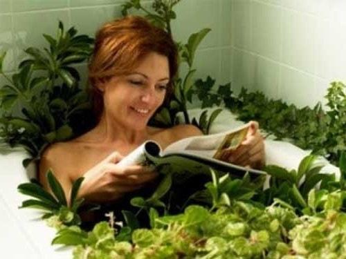 Ванны для тела из лекарственных трав