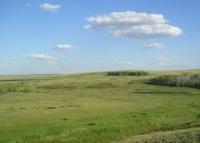Долина  Аркаима (Фото: И. Петрищева, личный архив)