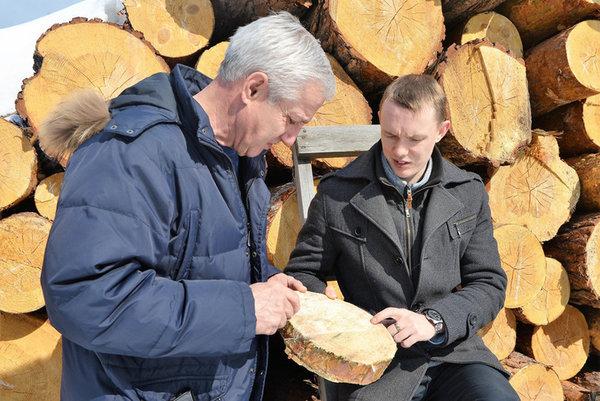 Ноу-хау сибирского ученого позволит вывести рынок лесозаготовок из тени.