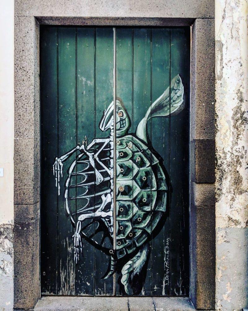 6. дверь, картина, мадейра, португалия, путешествие, фотография, фотомир