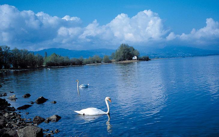 Боденское озеро