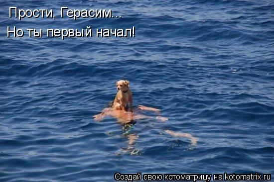 Котоматрица - Прости, Герасим... Но ты первый начал!