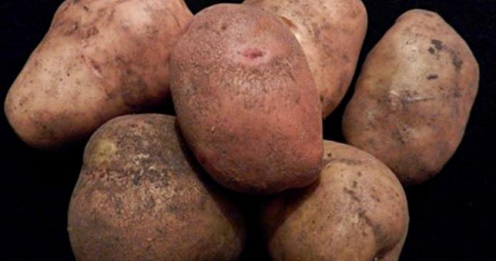 Вот что нужно знать о картофеле, прежде чем начать его готовить. Важная информация!
