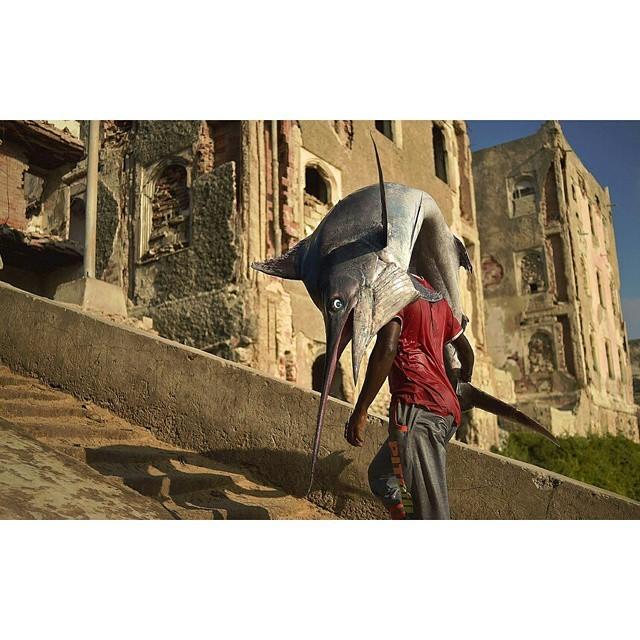 Рыба является важным источником пищи Могадишо, жители Сомали, сомали