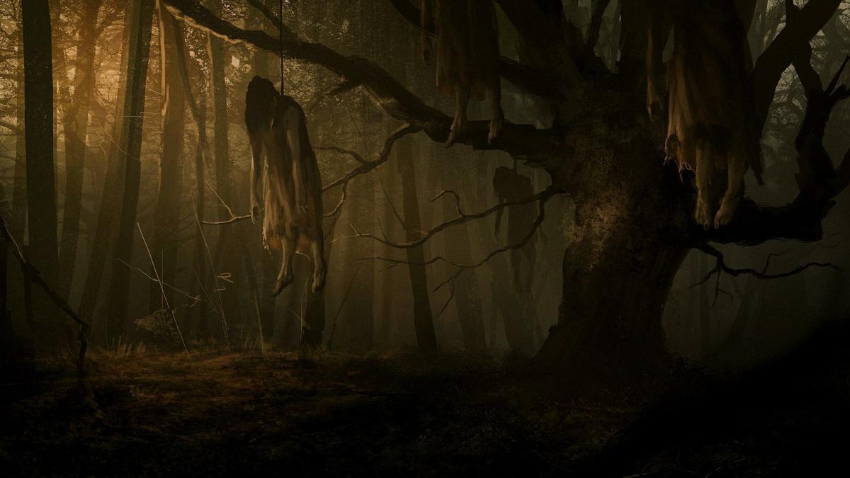 Аокигахара — лес самоубийц в Японии