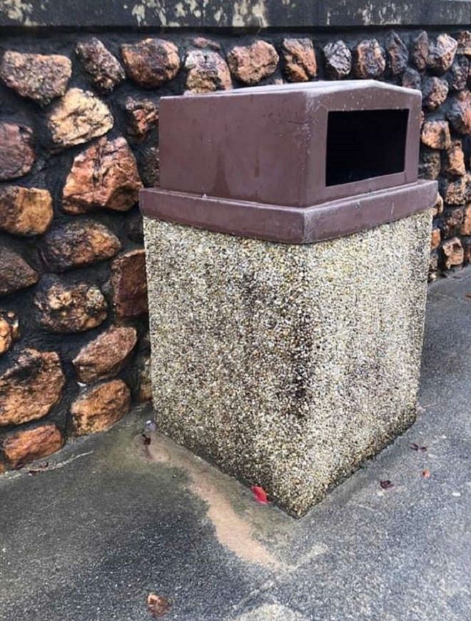 Из мусорного бака смотрели огромные печальные глаза: кто-то выбросил крохотную собачку, как ненужную вещь…