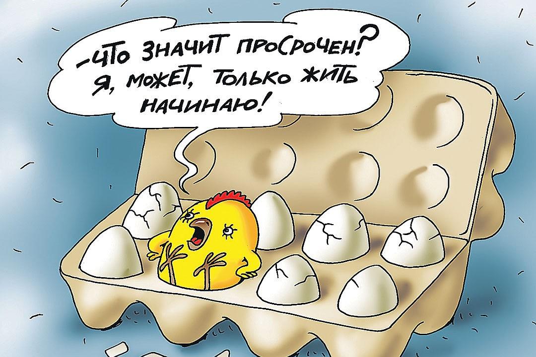 Рис.: Катерина МАРТИНОВИЧ