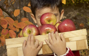 Фрукты и овощи на детском столе