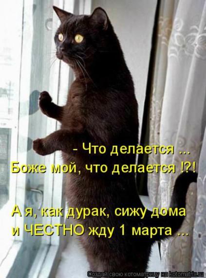 1359321434_96696240_large_1 (423x570, 64Kb)