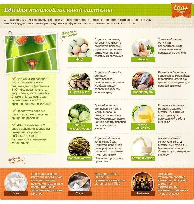 Полезные и вредные продукты. Влияние на организм человека
