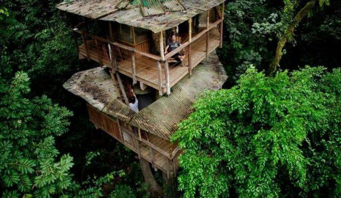 Деревня на деревьях - фото 6
