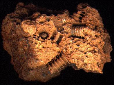 Загадочные неопознанные ископаемые объекты