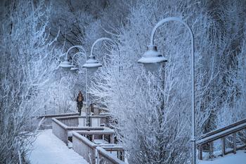 На Москву стремительно надвигаются 20-градусные морозы