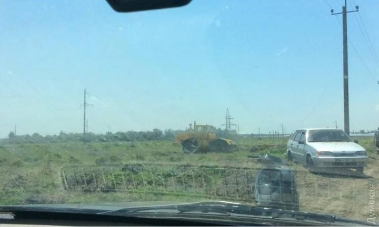 В Одесской области виноградники французского бизнесмена выкорчевывали трактором — конфликт едва не перерос в побоище