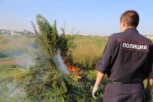 Полиция Севастополя раскрыла…