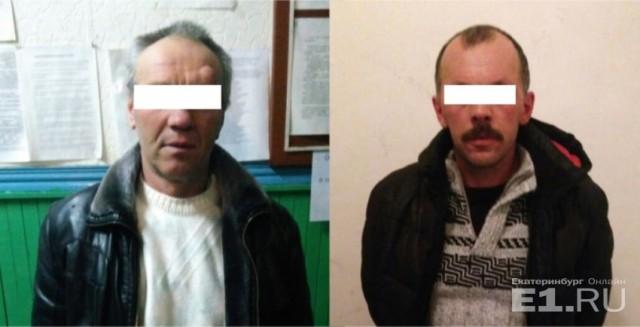 Двум уральцам, чьи собаки растерзали 7-летнюю девочку, грозит до 2 лет тюрьмы