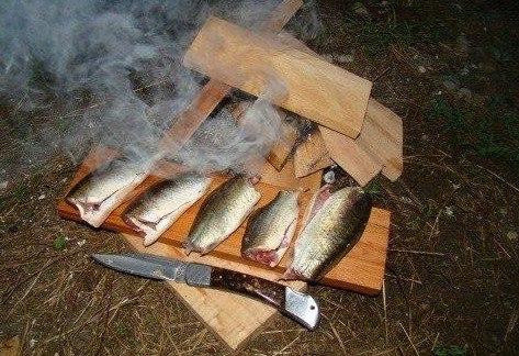 Как сохранить рыбу в походных условиях