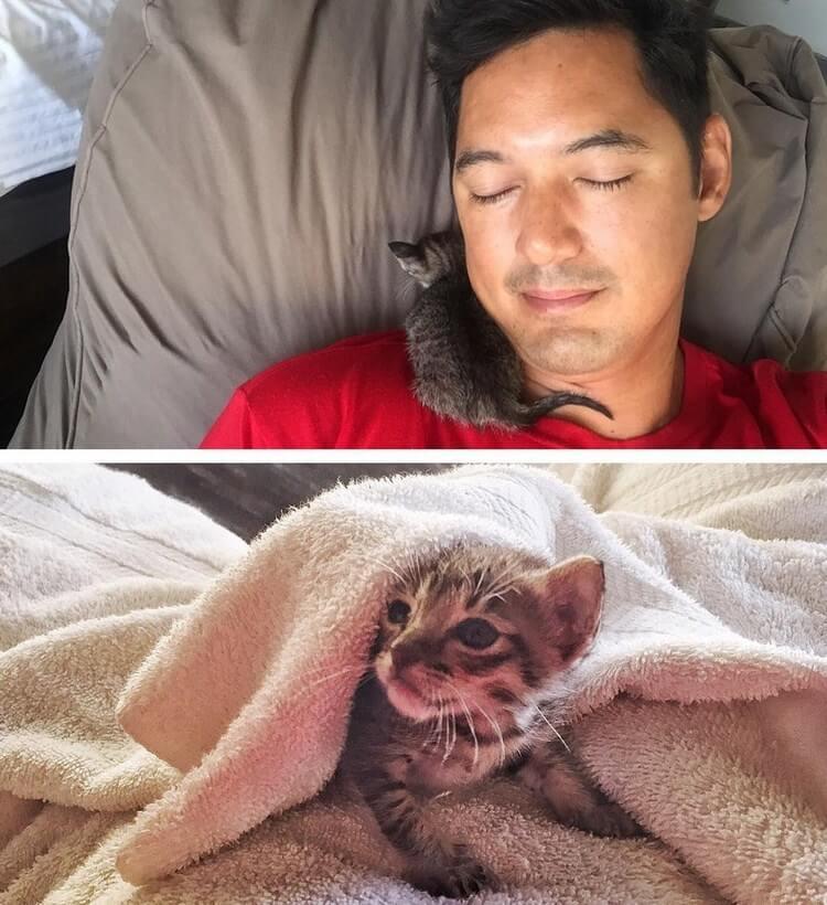 Одна встреча на пляже навсегда изменила две жизни – человека и котёнка