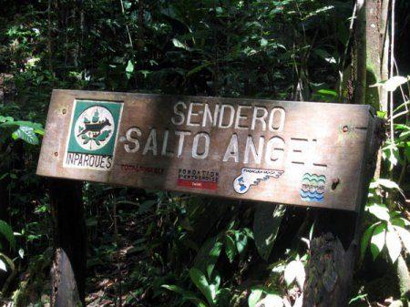 Высокая вода: интересные факты о водопаде Анхель