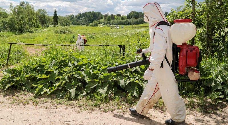Ботаническое оружие: как не …