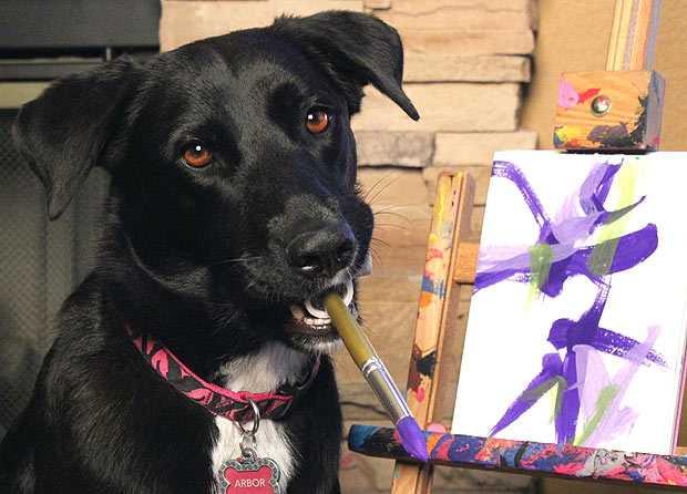 Собака пишет картины, чтобы помочь братьям меньшим