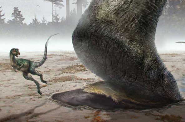 Раскрыта тайна самых больших следов на планете