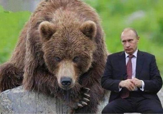 «Диктатор» и медведи: «плохая» Россия в украинских СМИ. ТОП-5 дня