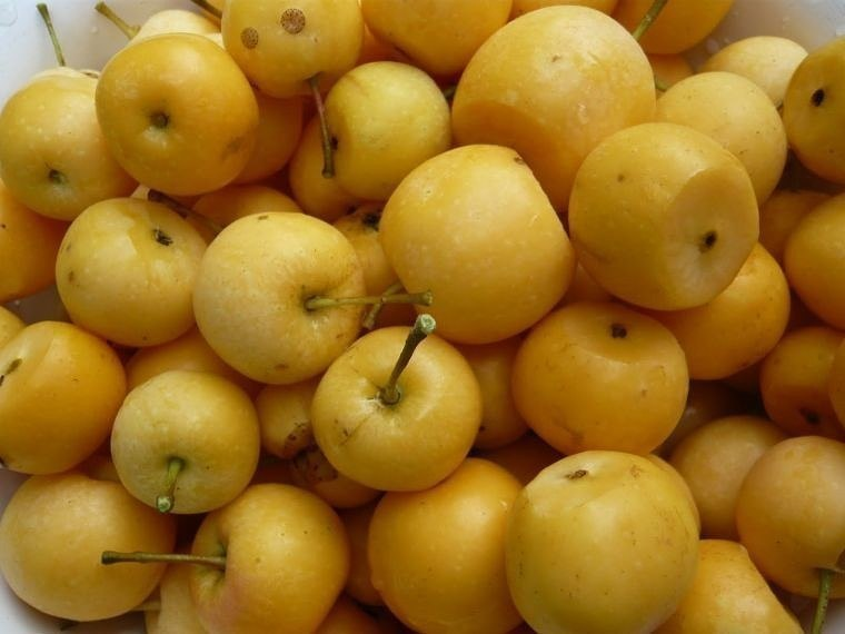 Моченые яблоки - суперзакуска!