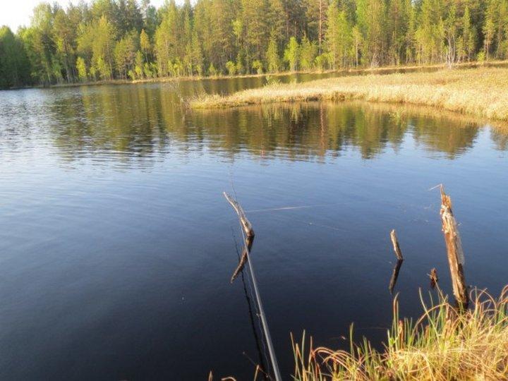 карелия рыбалка лучшие места дикарем
