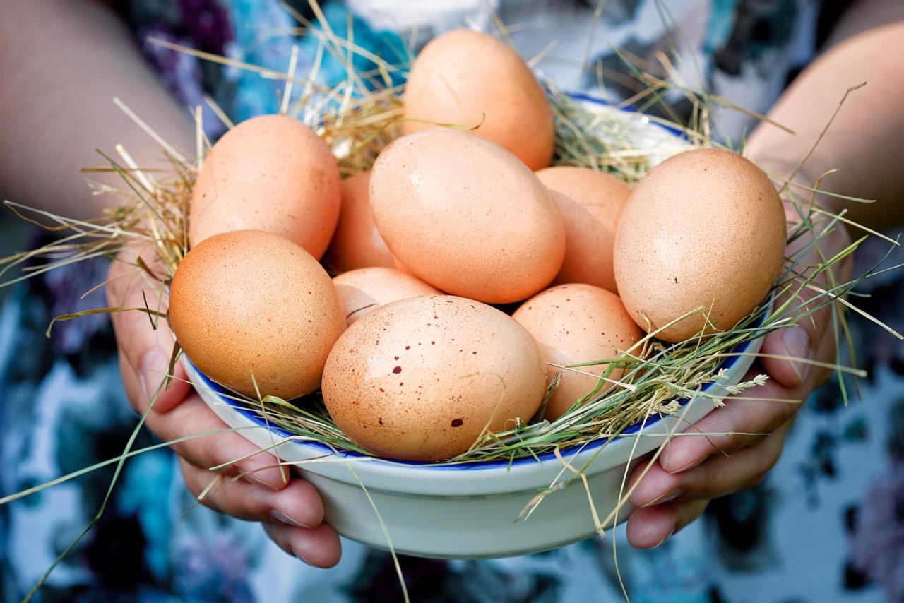 Убираем папилломы при помощи яиц , домашний рецептик.